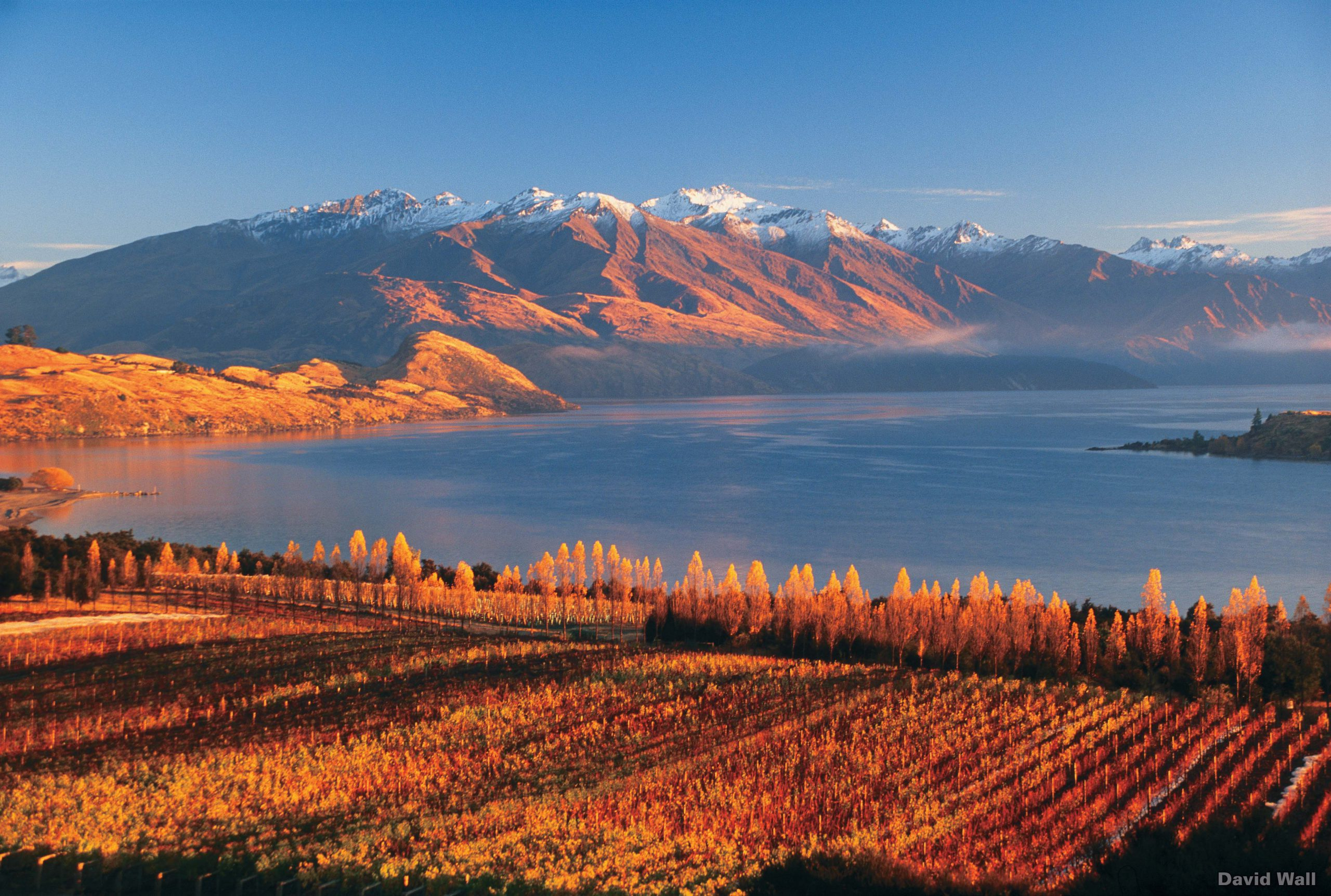 Luxury Touring, Rippon Vineyard, South Island, New Zealand